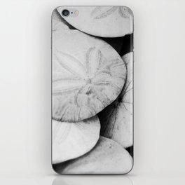 Sandollars iPhone Skin