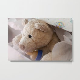 teddy bear gift Metal Print