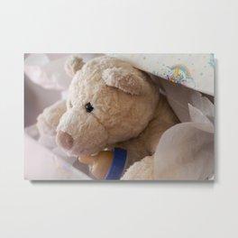 teddy bear gift Metal Print