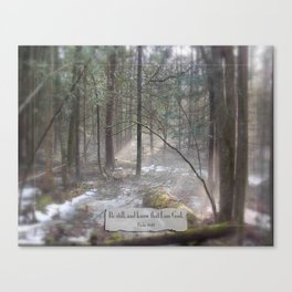Still Woods Canvas Print