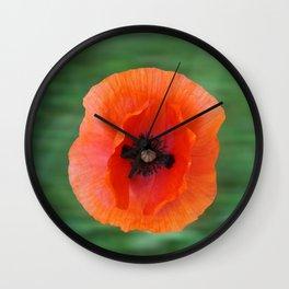 Floating poppy Wall Clock