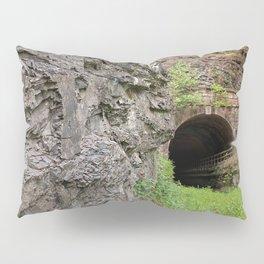 Paw Paw Tunnel Pillow Sham