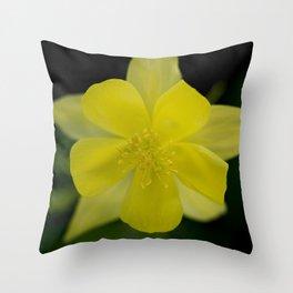 Golden Spur Columbine in Bloom Throw Pillow