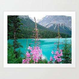 blue pink green Art Print