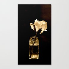 Still Life in Sepia Canvas Print