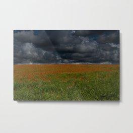 Storm over Poppy Field Metal Print