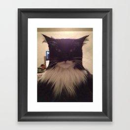 cat lol Framed Art Print