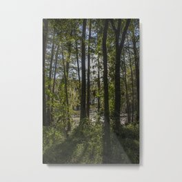 back of the monroe bayou Metal Print