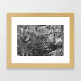 Owl Spirit in the Woods, Shades of Gray Framed Art Print