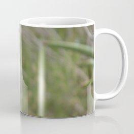 Meerkat Gaze Coffee Mug