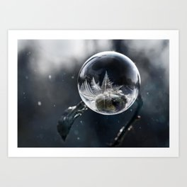 Winter wonders Art Print