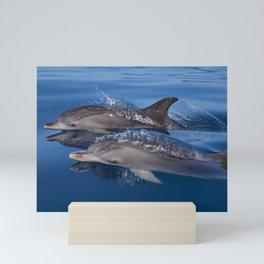 Dolphins Mini Art Print