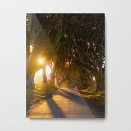 The Dark Hedges (RR192) Metal Print