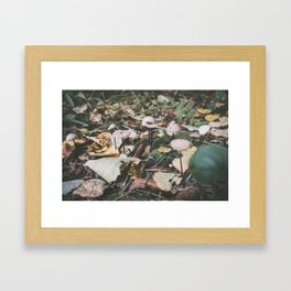 Forest (IV) Framed Art Print