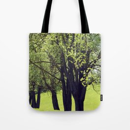 Meadow Path Tote Bag