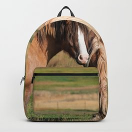 Gypsy_Vanner Horses 0271 - Colorado Backpack