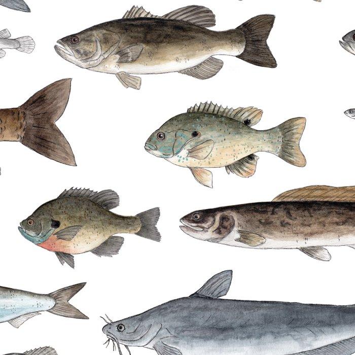 A Few Freshwater Fish Leggings