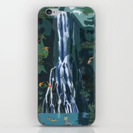 Waterfall stop iPhone Skin