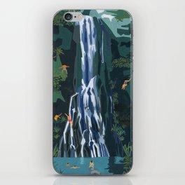 Waterfall stop iPhone Skin