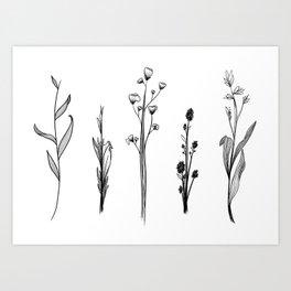 Alternative Weeds Art Print