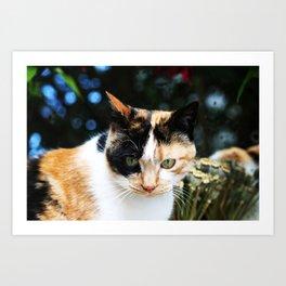 Sweet Cat Portrait Art Print