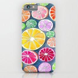 Citrus Painting iPhone Case
