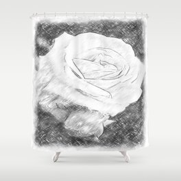 Pink Roses in Anzures 2 Charcoal Shower Curtain