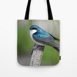 Male Tree Swallow II Tote Bag