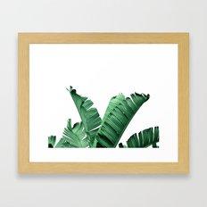 TROPIC - BANANA LEAF Framed Art Print
