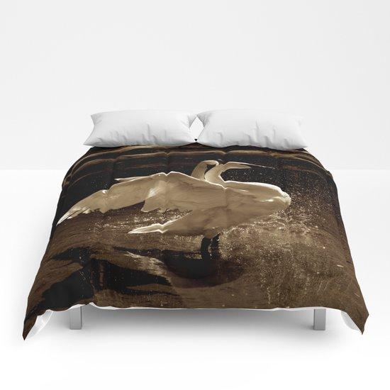 Spotlight's on You! Comforters