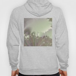 Awakening into a beautiful morning - A fractal fantasy Hoody