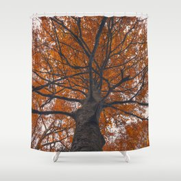 Fall tree, Autumn landscape Shower Curtain