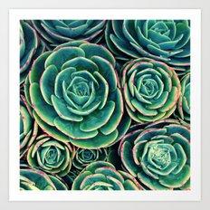 Rosettes in Green Art Print