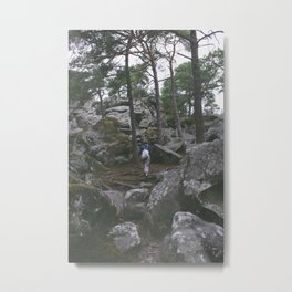 Fontainebleau Forest Metal Print