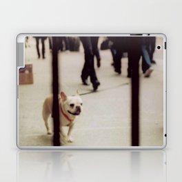 Dog Walking Laptop & iPad Skin