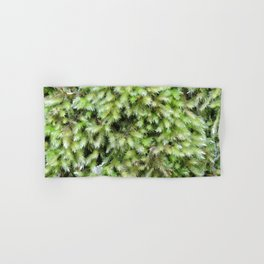 TEXTURES -- Moss on a Tree Trunk Hand & Bath Towel