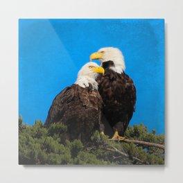 North Beach Eagle Pair Metal Print