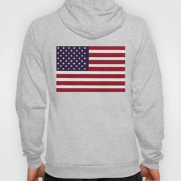 American flag - painterly treatment Hoody