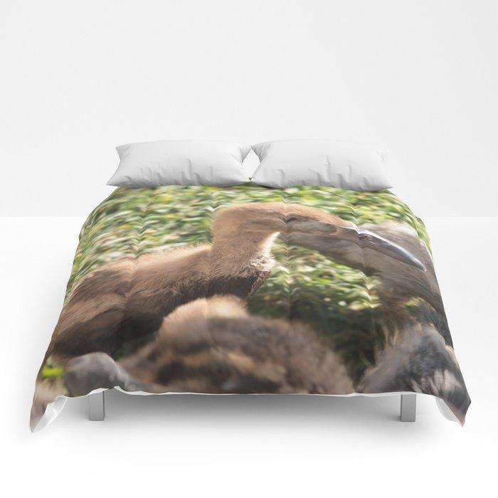 Duckies Comforters