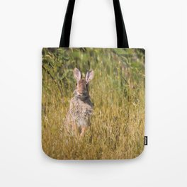 Cute and Curious Eastern Cottontail Rabbit in the Long Grass Tote Bag
