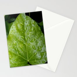 raindrop 6 photography Stationery Cards