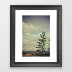 Lone Pine Framed Art Print