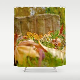 Autumn day 2016 Shower Curtain