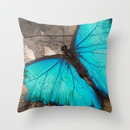 Weathered wings Throw Pillow