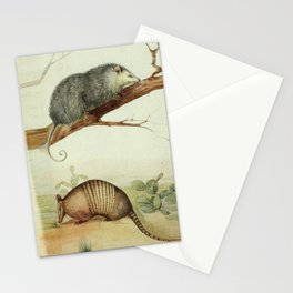 Opossum and Armadillo Stationery Cards