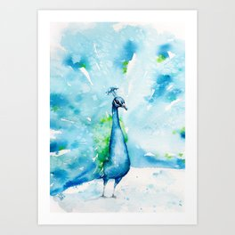 Peacocking Around Art Print