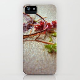 Sea Ranch seaweed 2 iPhone Case