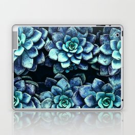 Blue And Green Succulent Plants Laptop & iPad Skin