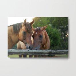 Horsey Smooches Metal Print