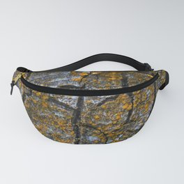 The identity of a tree Fanny Pack